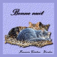"""La """"Bannière aux oiseaux"""" terminée ..............."""