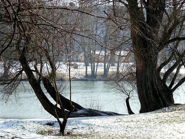 Bords de Moselle hiver 8 Marc de Metz 2012