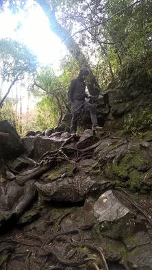 balade en mode siret, dans les forêts