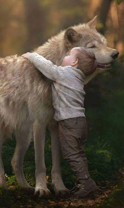 (-*♥*-) Ce chien maltraité avait peur de tout le monde, sauf de ce bébé et leurs photos sont adorables