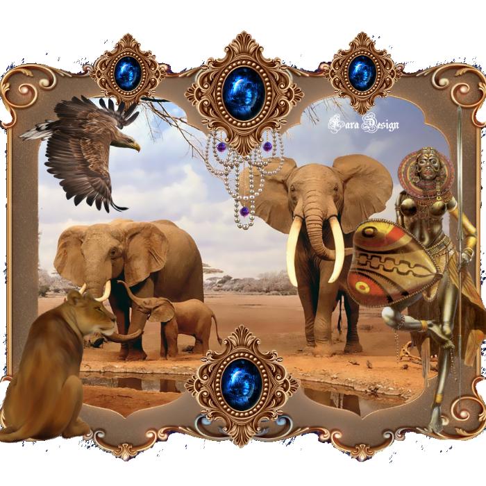 """Semaine""""Afrique"""""""