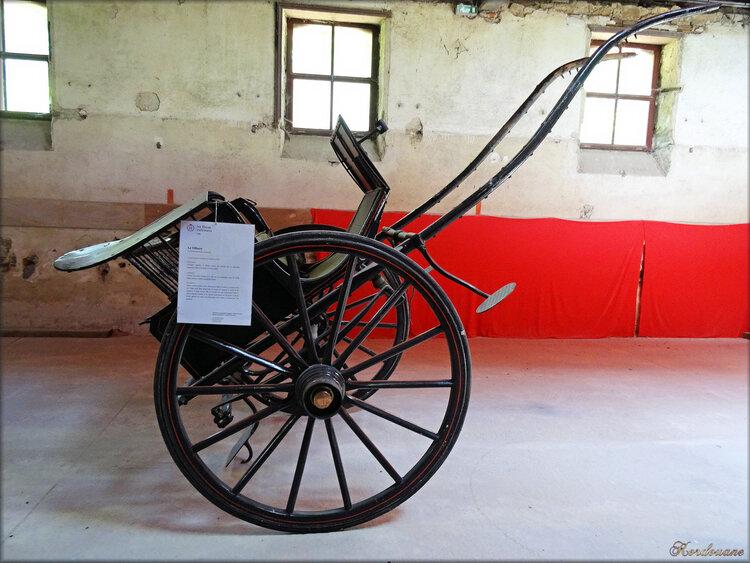 Photos véhicules hippomobiles : le Tilbury (Haras de Vendée)