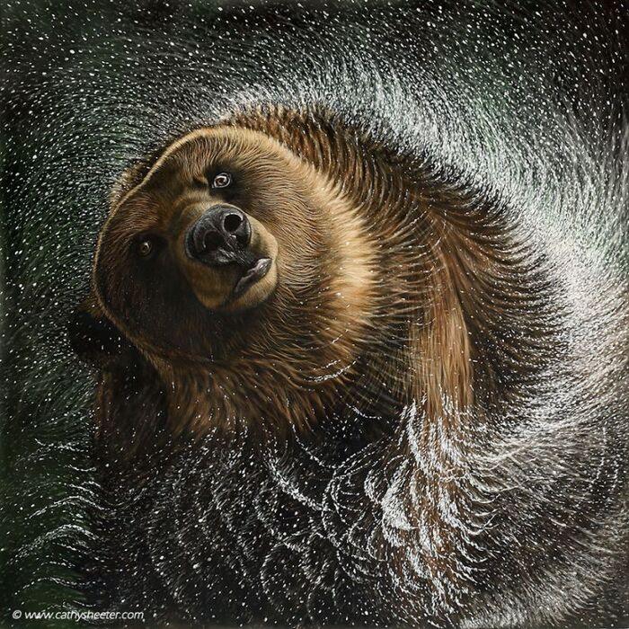 Cet artiste dépeint la beauté de la faune avec un art de grattage hyper réaliste