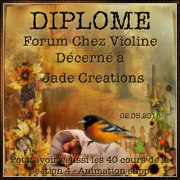 Diplômes Animations Shop sur Forum de Violine