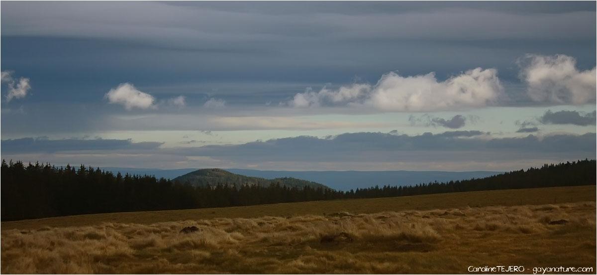 Auvergne: Lac de Servières