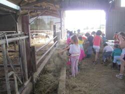 Notre sortie à la ferme