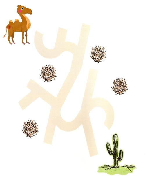 Tracés dans le désert