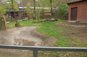 Zoo Osnabruck d50 2012 193
