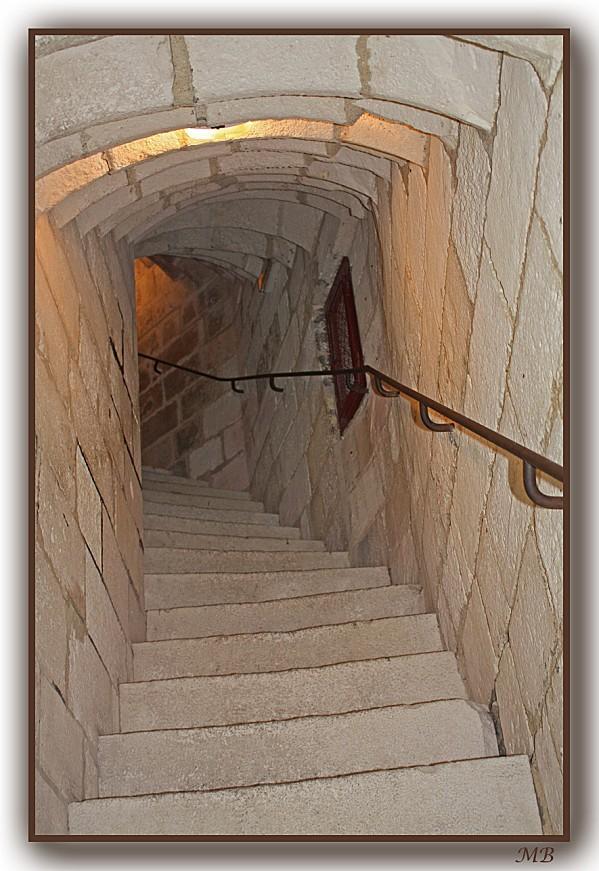 Les escaliers 2446