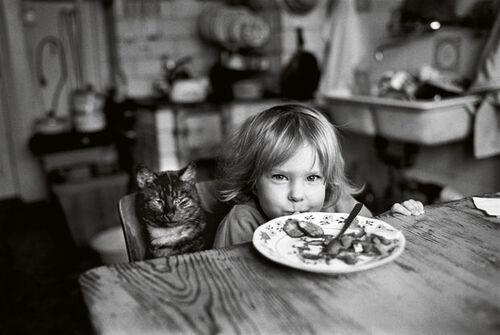 04 - Des chats et des hommes