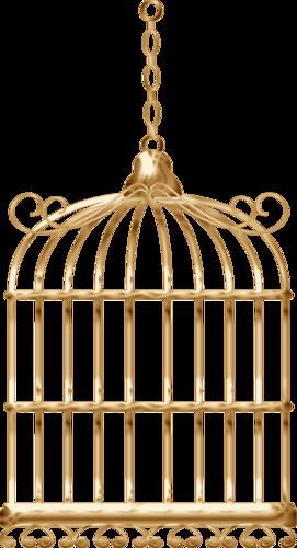 Cages à Oiseaux Série 4
