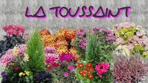 """Résultat de recherche d'images pour """"la toussaint"""""""