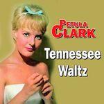 ♫ Nashville - Tennessee ♫