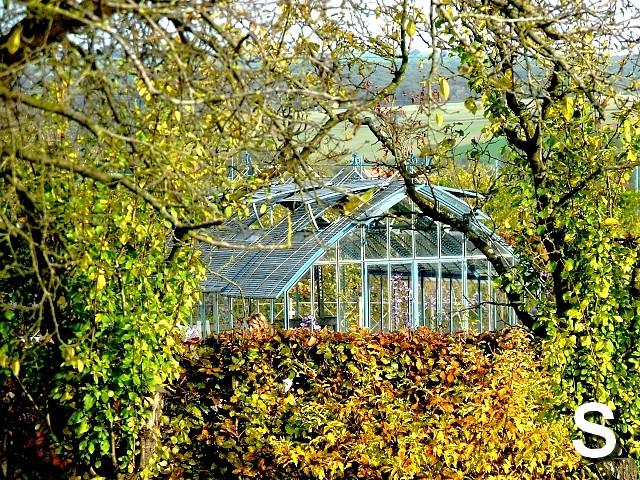 L'abécédaire des jardins S Marc de Metz 31 10 2012