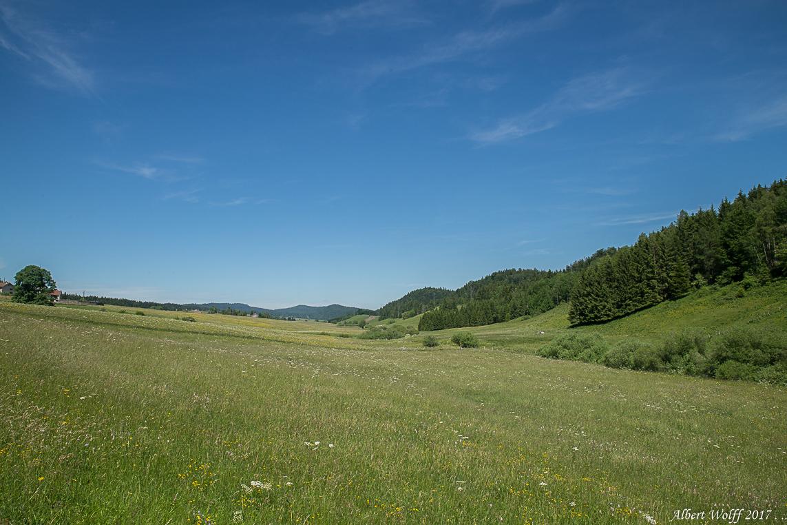 Jura des herbages