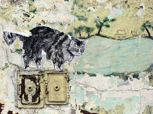 18 - Street art and cat, encore