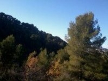 paysages montaiguesque