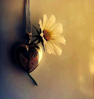 Le coeur  ...