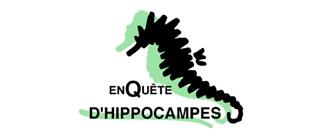 http://ekladata.com/jykVIKlwZus7yEWlA5Wtt3pe7ho/logo-hippocampes.jpg