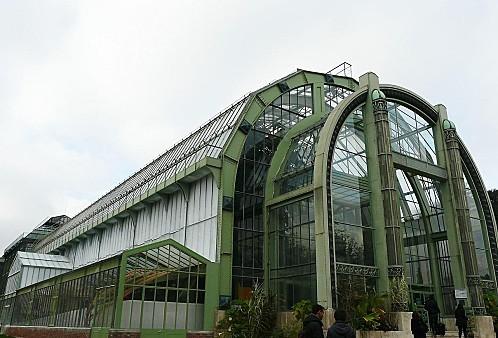 Serre-tropicale--Jardin-des-plantes-386.jpg