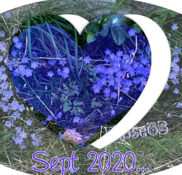 Mercredi 9 septembre 2020