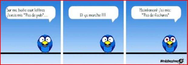 ♥Afrique♥