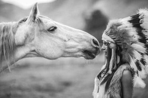 Si j'avais un cheval...