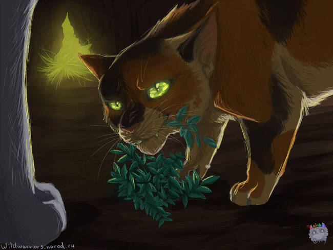 (Traduction) Chapitre 8 de Dovewing's Silence
