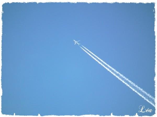 DSCF6312-avion.jpg