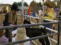 2001 -Cowboy Up (Ring of Fire)