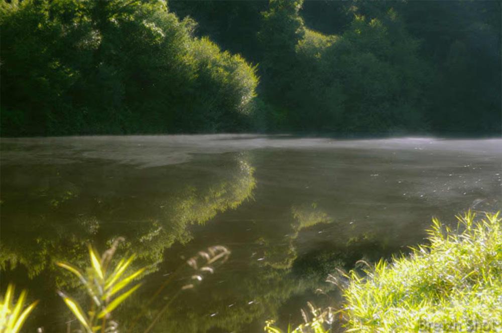 Brume matinale sur le Blavet à Pont Augan