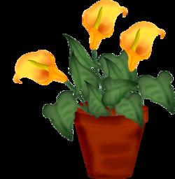 pots pour vos creas florales