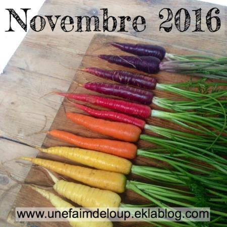 Novembre 2016 : les fruits & Légumes de saison
