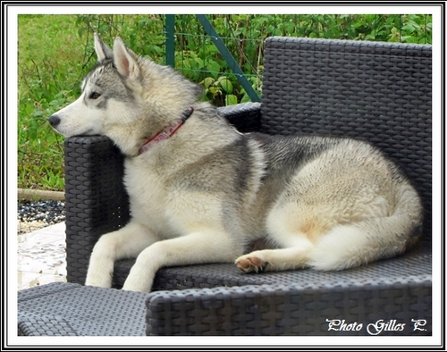 Iska (6 mois)
