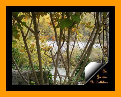 Jardiner avec la lune du 1er au 15 Novembre