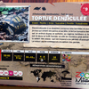 Tortue Denticulée - Panneau