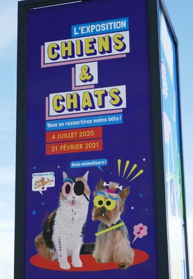 """Exposition """"Chiens et chats"""""""