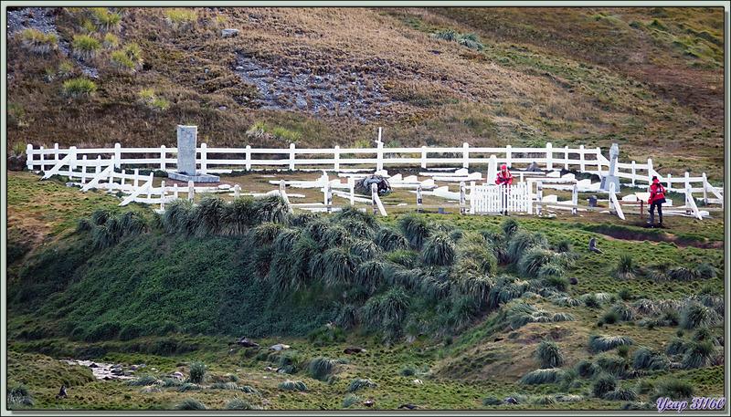 Retour sur le bateau, dernières photos de King Edward Cove avec Grytviken et son cimetière - Géorgie du Sud