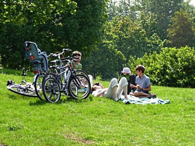 Jardins et pelouses de Metz 19 mp1357