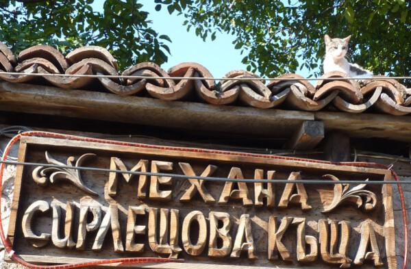 Jour 3 - Bansko Mejana au chat
