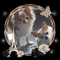 ♥ Ma Fiona & Ma Shana ♥