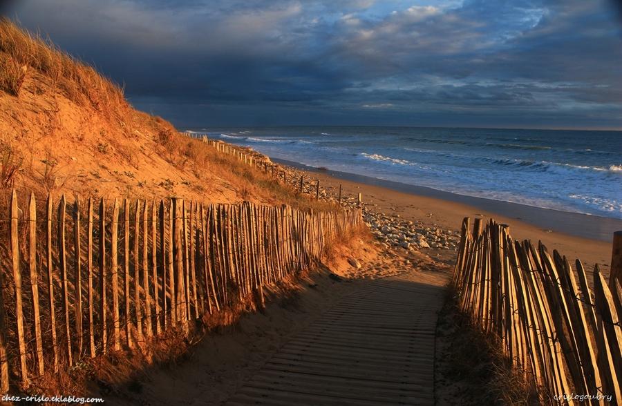 vamos a la playa..