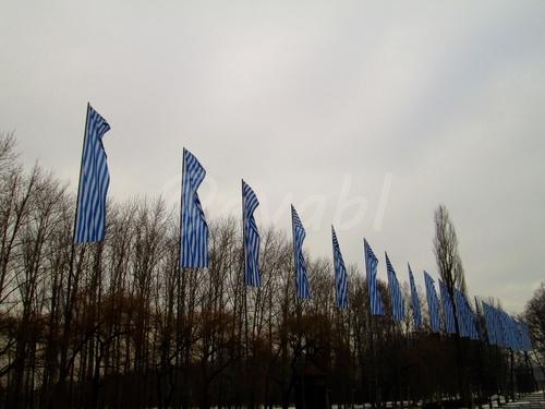 Pologne (Auschwitz)