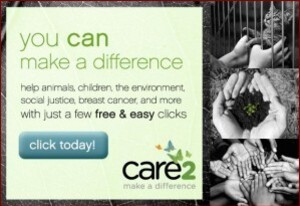care2.02