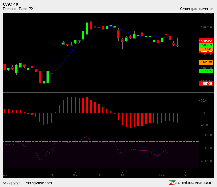 The Early Bird 07/06