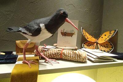 d'autres oiseaux ........
