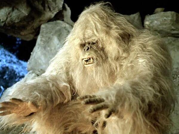 Partout dans le monde, des légendes décrivent un être mi-homme mi-animal, couvert de poils hirsutes, marchant sur deux jambes et mesurant entre 1,50 et 3,75 m. Son nom varie selon les localités : yéti au Népal et au Tibet, Mande barung en Inde, Bigfoot aux États-Unis, Sasquatch au Canada, Almasty ou Kaptar dans le Caucase, Yowie en Australie, Mapinguari au Brésil, Sajarang gigi en Indonésie ou encore Basajaun au Pays basque. © Wanida.w, Wikimedia Commons, cc by sa 3.0