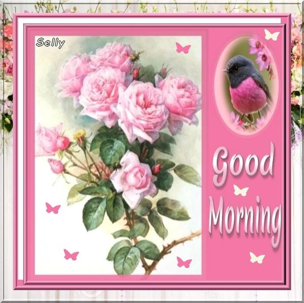 **Good Morning**Cartes
