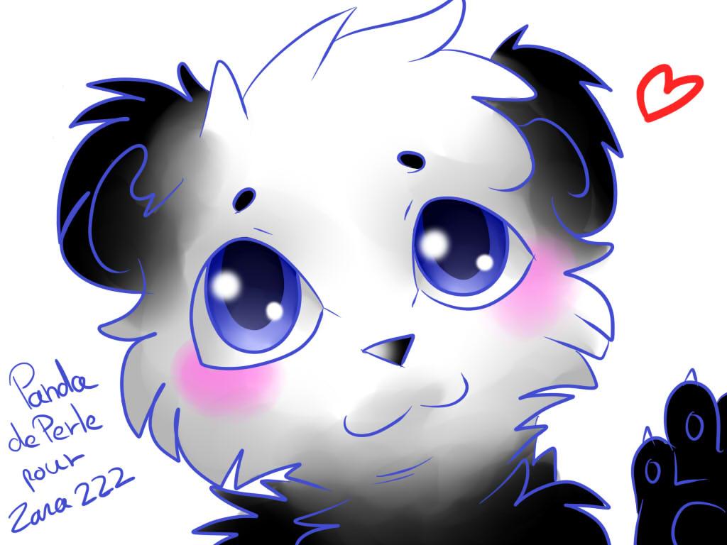 panda mignon pour zara 222