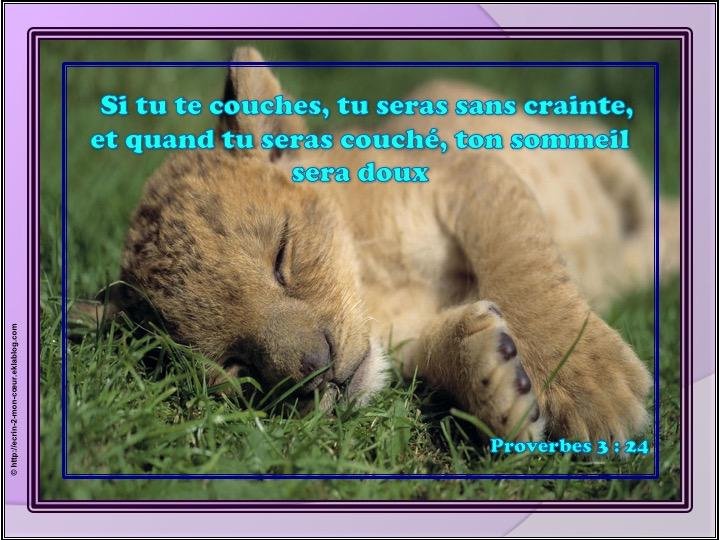 Tu seras sans crainte - Proverbes 3 : 24